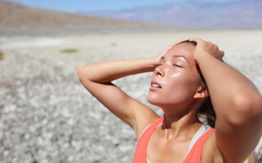 2012 год вошел в десятку самых теплых