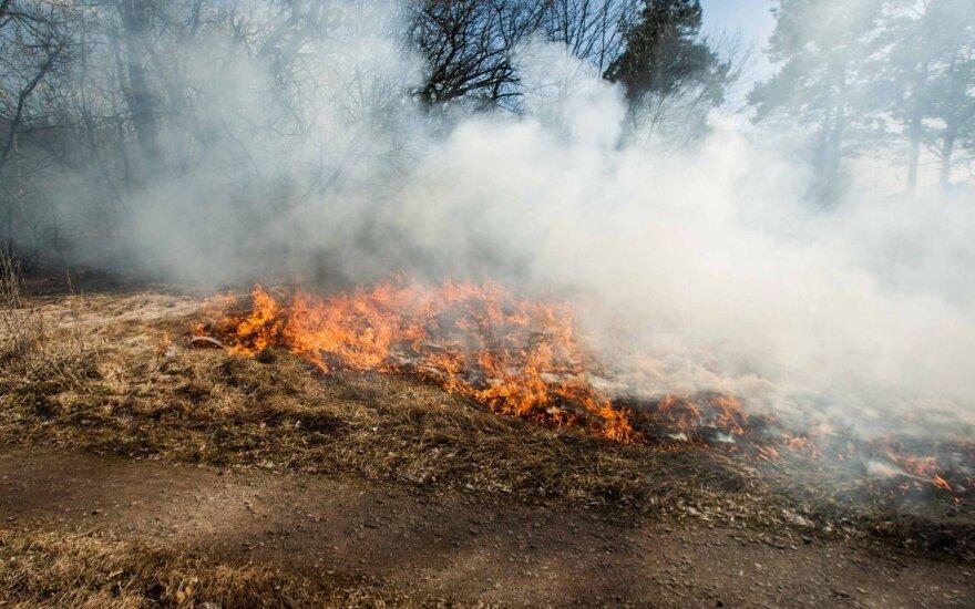 Пожар в Паневежском районе: горели здания компании Alksnio dūmas