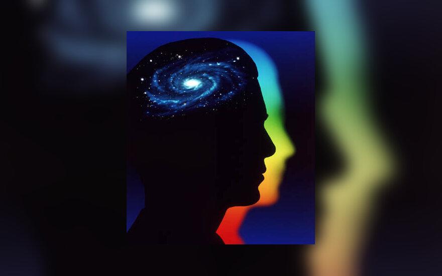 žmogus, protas, smegenys, intelektas, mintis, idėja
