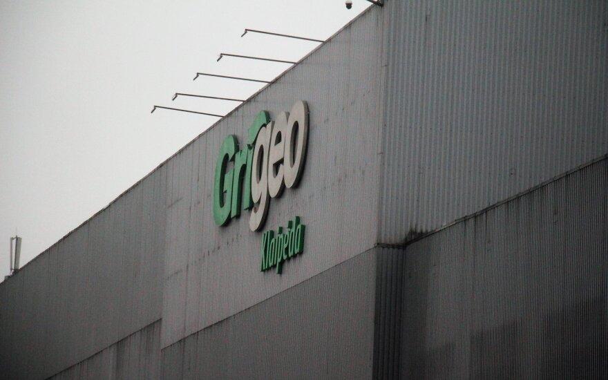 После скандала с Grigeo появились новые подозрения: почему этого не замечали городские власти