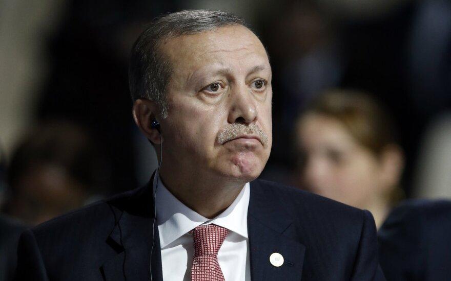 Эрдоган назвал гитлеровскую Германию примером эффективной президентской системы