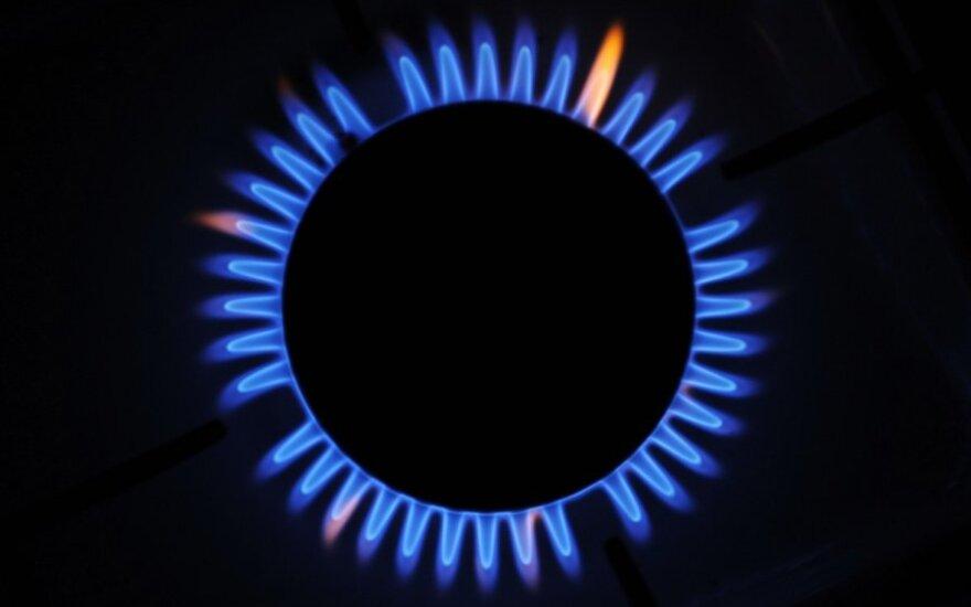 Кабмин Литвы: поставщики газа обязаны поделиться с потребителями