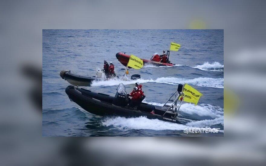 Greenpeace не будет патрулировать воды у берегов России