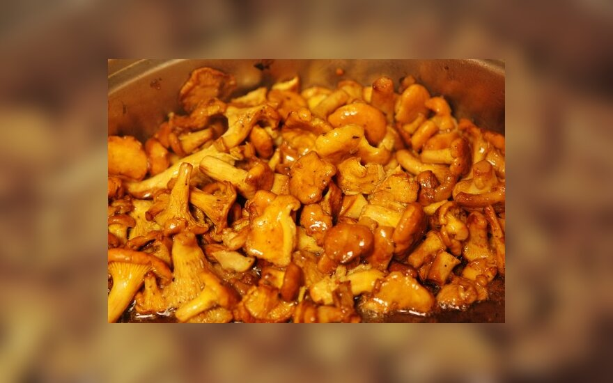 Немцы обходят стороной грибы из Литвы