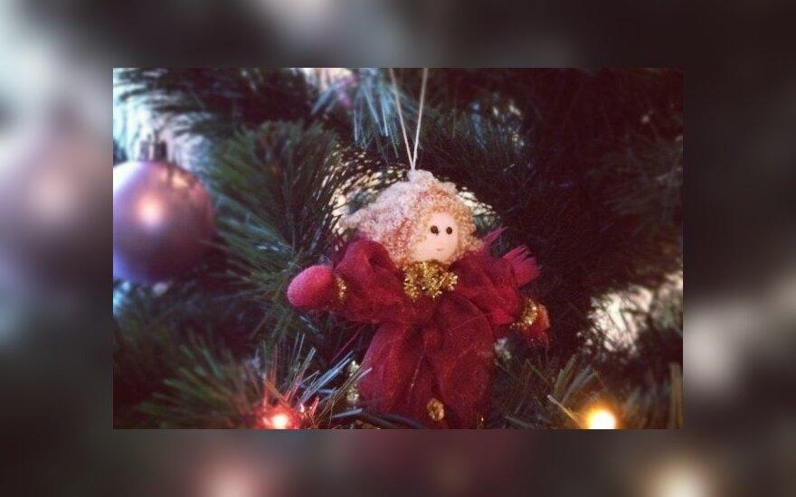 В Мариямполе ветер опрокинул рождественскую елку