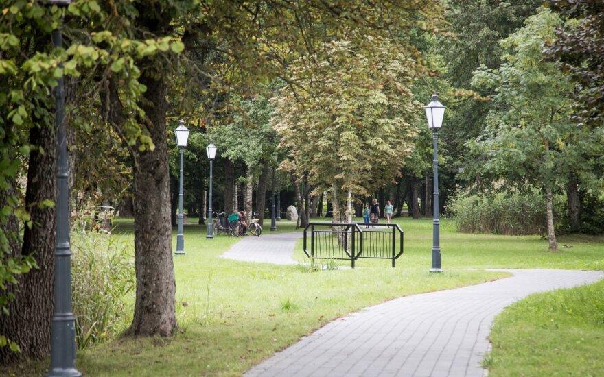 В йонишкском парке полиция задержала нетрезвого стрелка