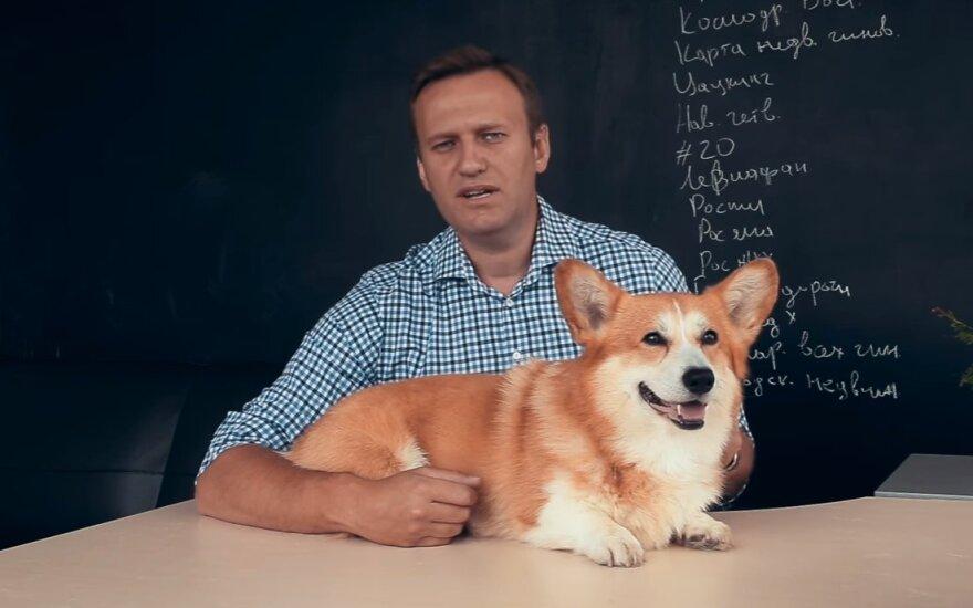 Пустят ли Алексея Навального на президентские выборы?