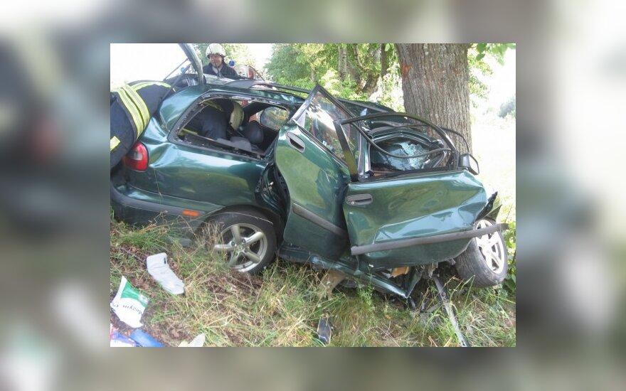Паневежец врезался в дерево на скорости 130 км/ч
