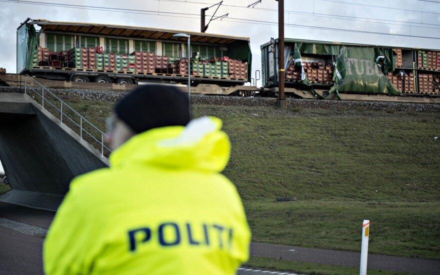 Президент Литвы выразила соболезнования Дании в связи с гибелью шести человек