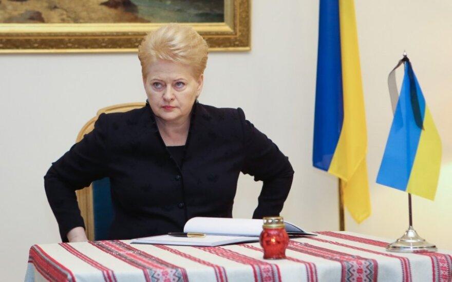 Грибаускайте и Кэмерон осудили агрессию России в Украине