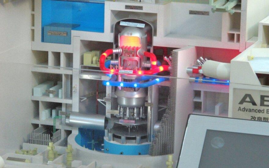 """Kompanijos """"Hitachi"""" parengtas atominės elektrinės modelis"""