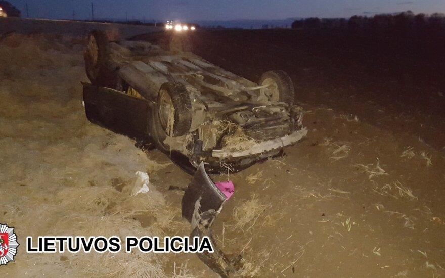 В Паневежском районе машина сбила трех зубров