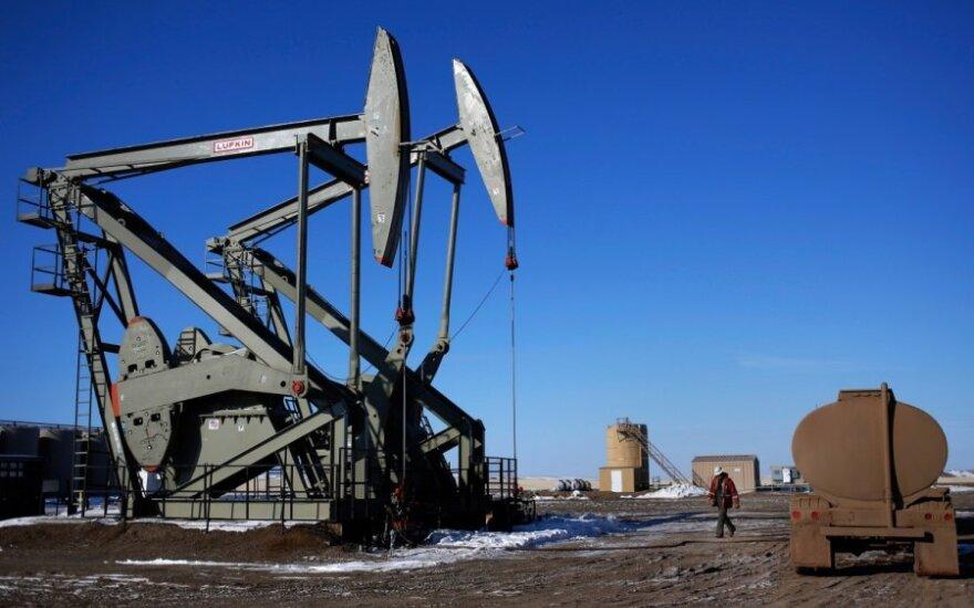 Geologai rengia išvadas, nuo kurių priklausys, ar Žemaitijoje galima išgauti naftą