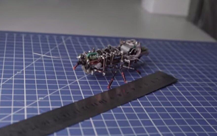 Mechaniczny karaluch prosto z Rosji