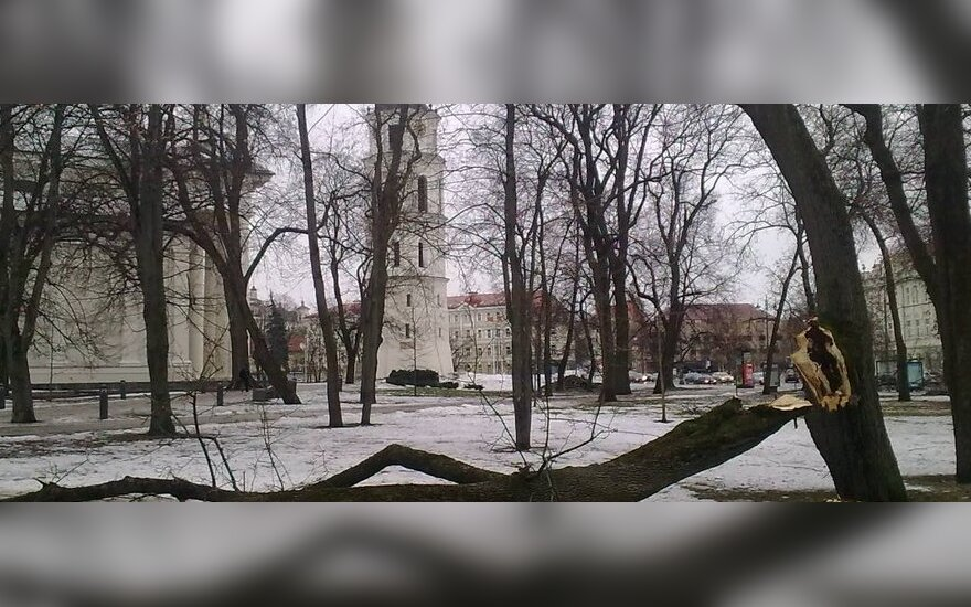 Audra Vilniuje, DELFI skaitytojo nuotr.
