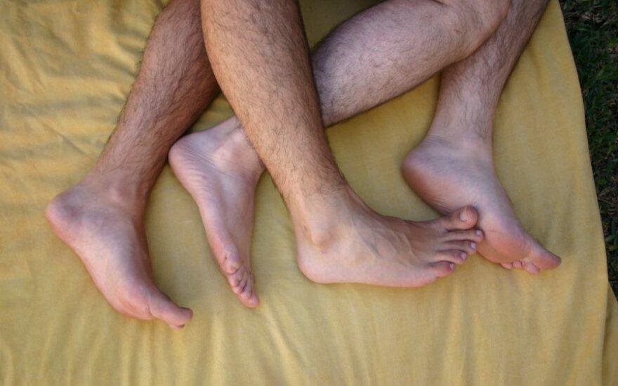 Гомосексуальность самцов оказалась средством привлечения самок