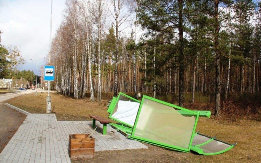 Сильный ветер валил деревья в Друскининкай