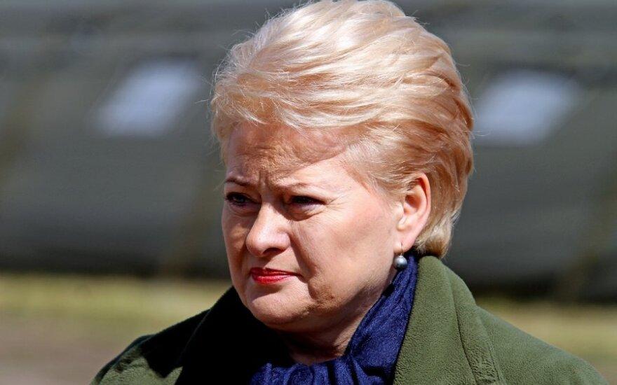 """Президент Литвы: """"медовый"""" период для правящей коалиции закончился"""