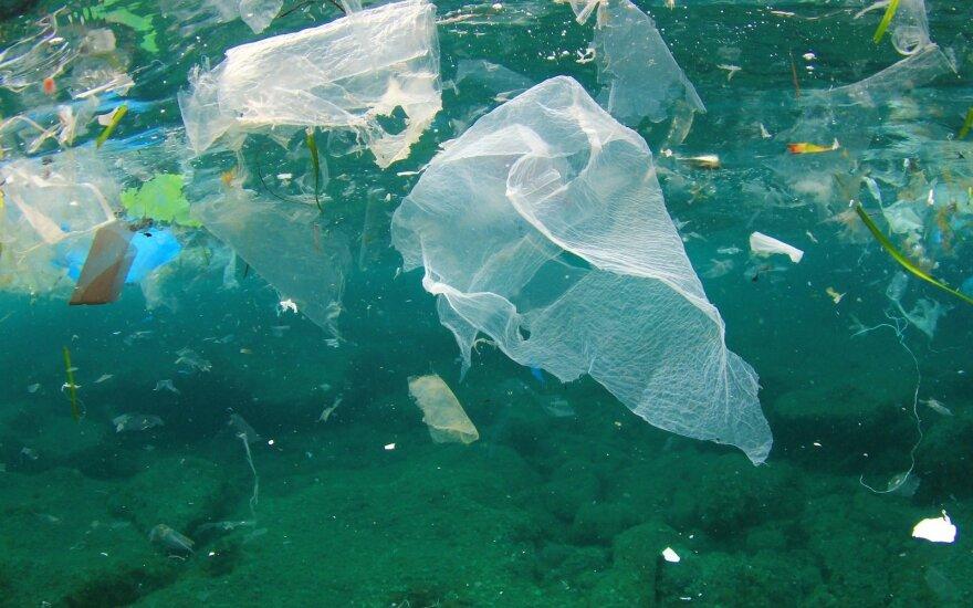 Plastikiniai  maišeliai vandens telkinyje