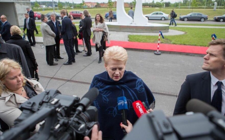 Президент поддерживает идею создания Фонда развития Юго-Восточной Литвы