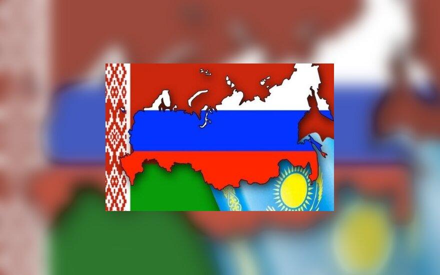 Еврокомиссар: Таможенный союз лишит Украину суверенитета