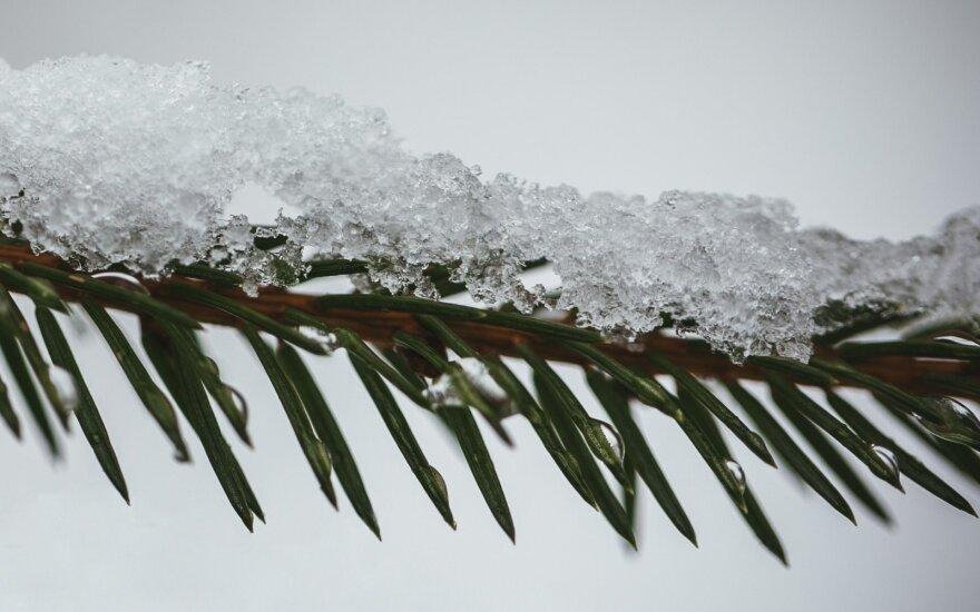 Погода: зима не за горами