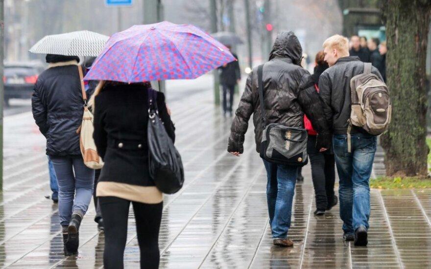 Прогноз: перед Рождеством ожидаются дожди