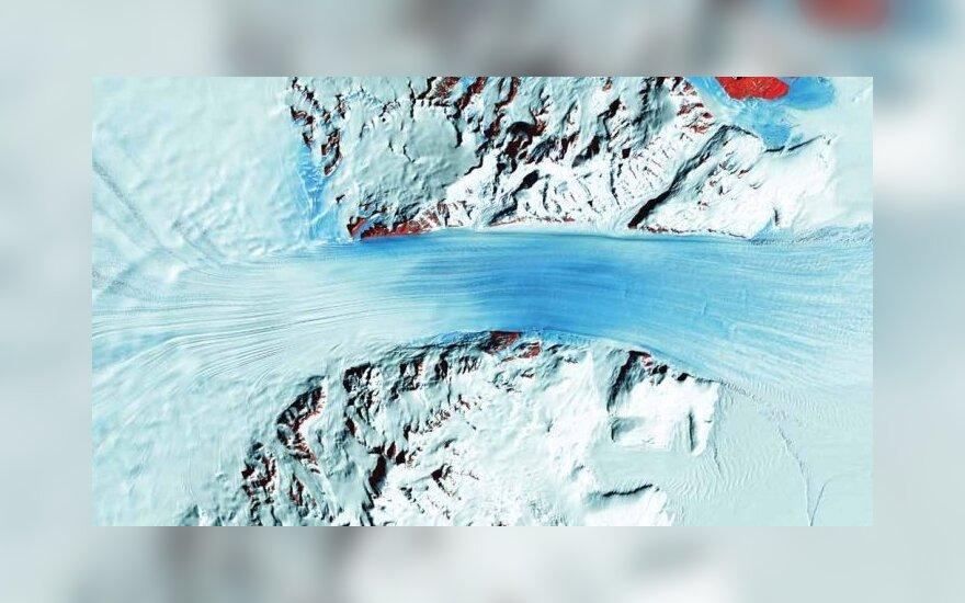 Byrdo ledynas (Antarktida)