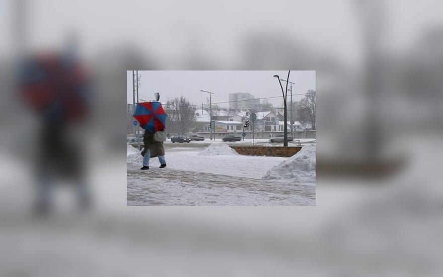 В Литве выпало 20 сантиметров снега