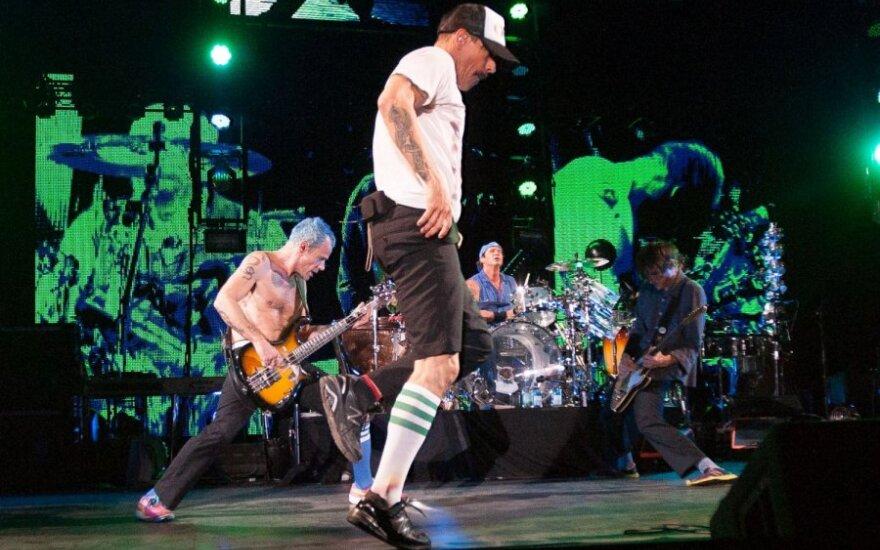 Белорусские таможенники заставили Red Hot Chili Peppers подписывать диски Metallica