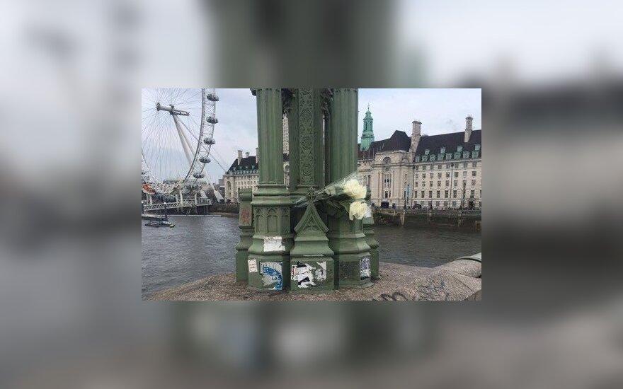 """""""Лондонский глаз"""" эвакуировали из-за неразорвавшегося снаряда"""