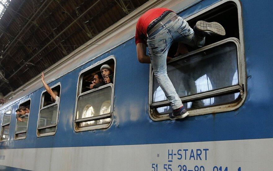 В Чехии перестанут задерживать мигрантов, пробирающихся в Германию