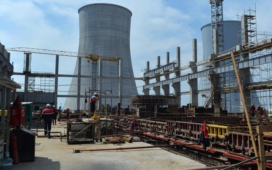 Науседа: эксперты могли бы убедить соседей блокировать электроэнергию с БелАЭС