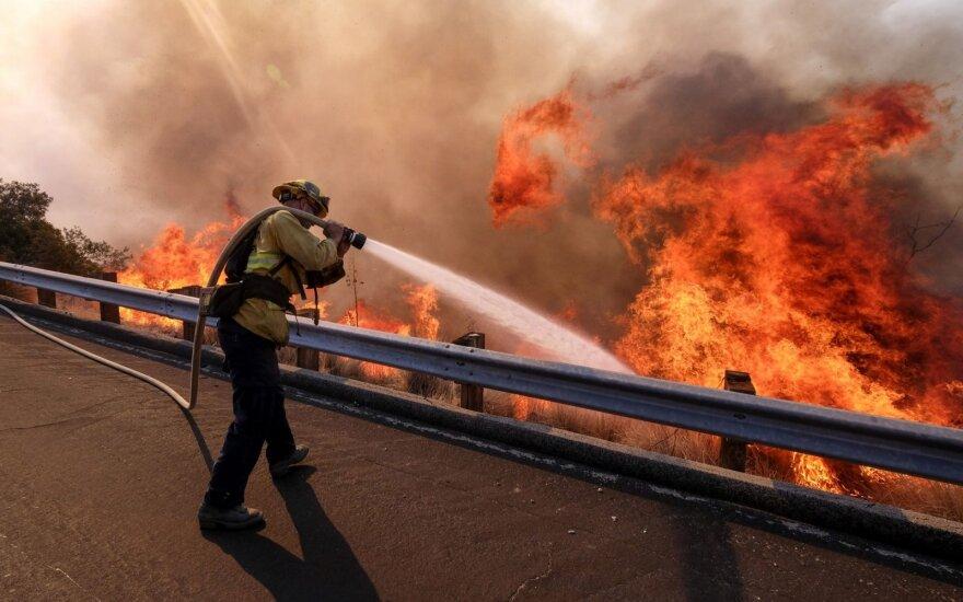 ФОТО: Калифорния объявлена зоной стихийного бедствия — число жертв лесных пожаров возросло до 44