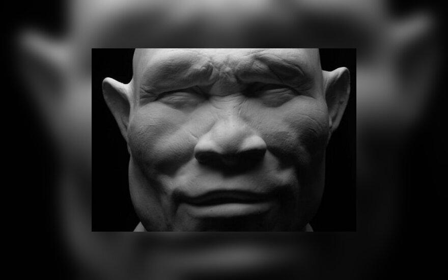 Антропологи: человек рудольфский — параллельный вид эволюции