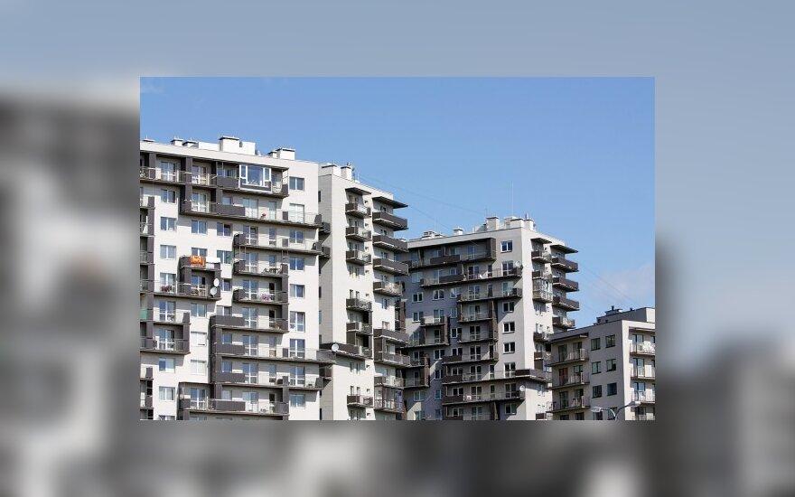 Объявления: цены на аренду в 2010 году не снижались