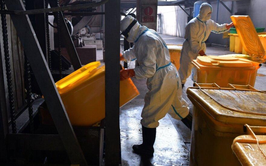 Глава ассоциации: из-за распространения коронавируса правительство могло бы ввести налоговые льготы