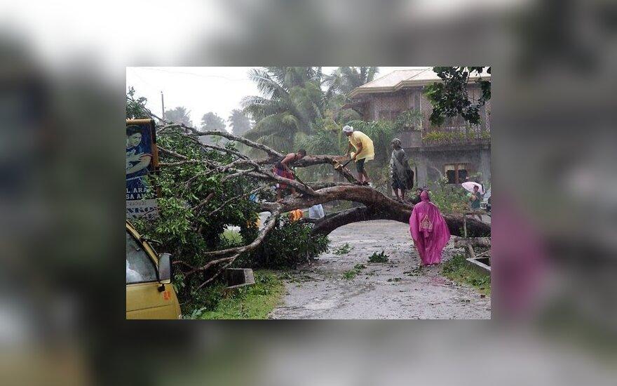 Жертвами филиппинского тайфуна стали 230 человек
