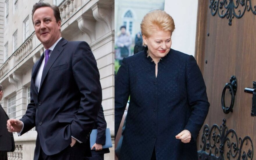 Davidas Cameronas, Dalia Grybauskaitė