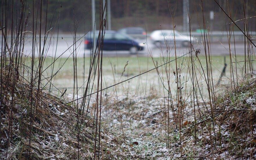 Погода: похолодает, по-прежнему местами будет идти мокрый снег