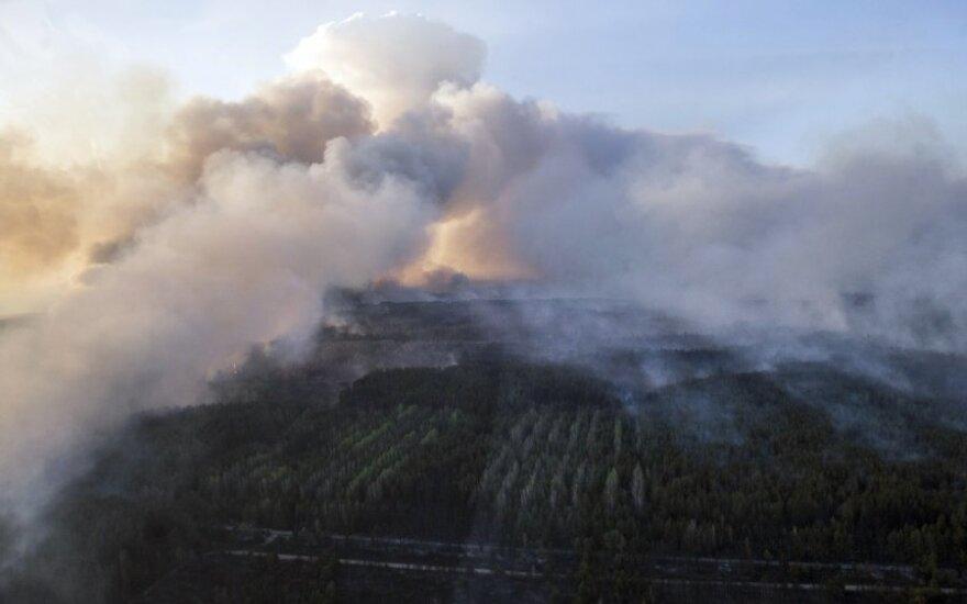 Власти: пожар вокруг Чернобыля потушен