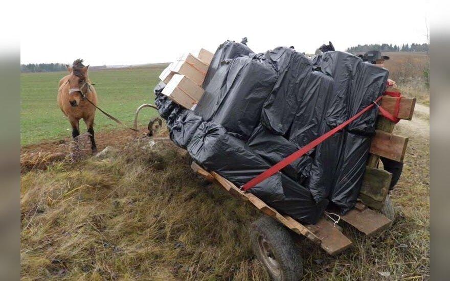 Лошадь подчинилась пограничникам, контрабандисты пытались бежать