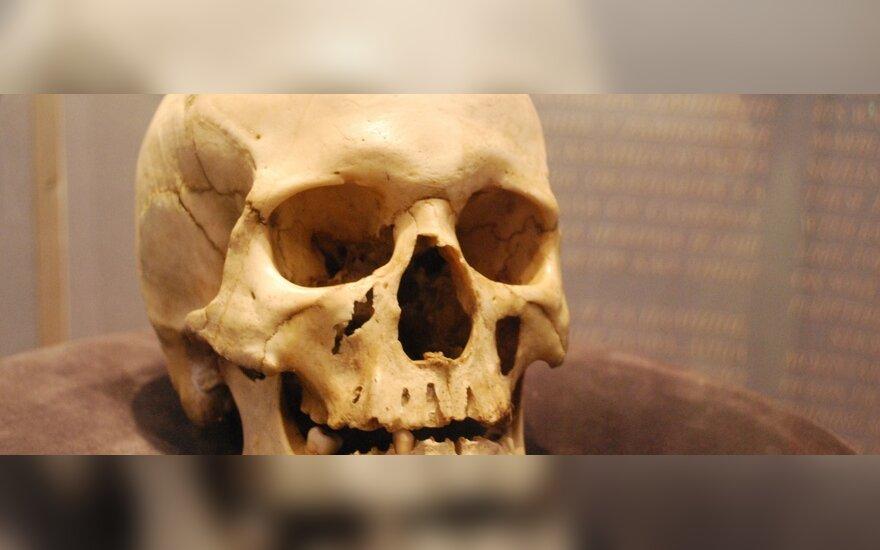 Пожилой женщине подбросили череп