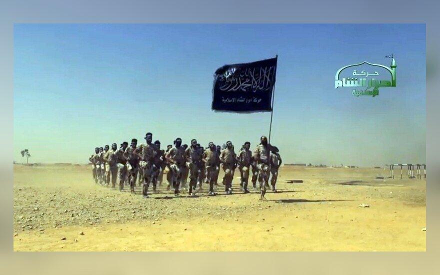 Три страны ЕС готовы присоединиться к операции против джихадистов в Ираке
