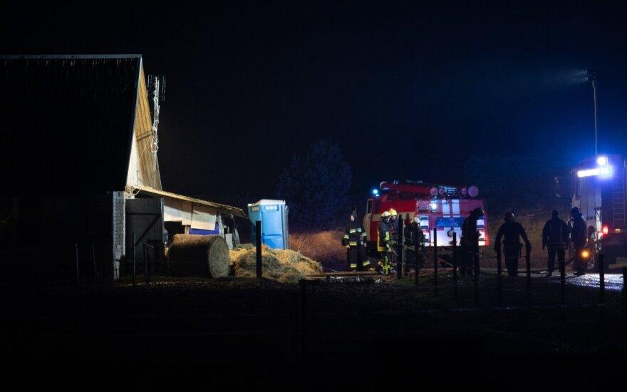 Большой пожар в Вильнюсском районе: горел конезавод