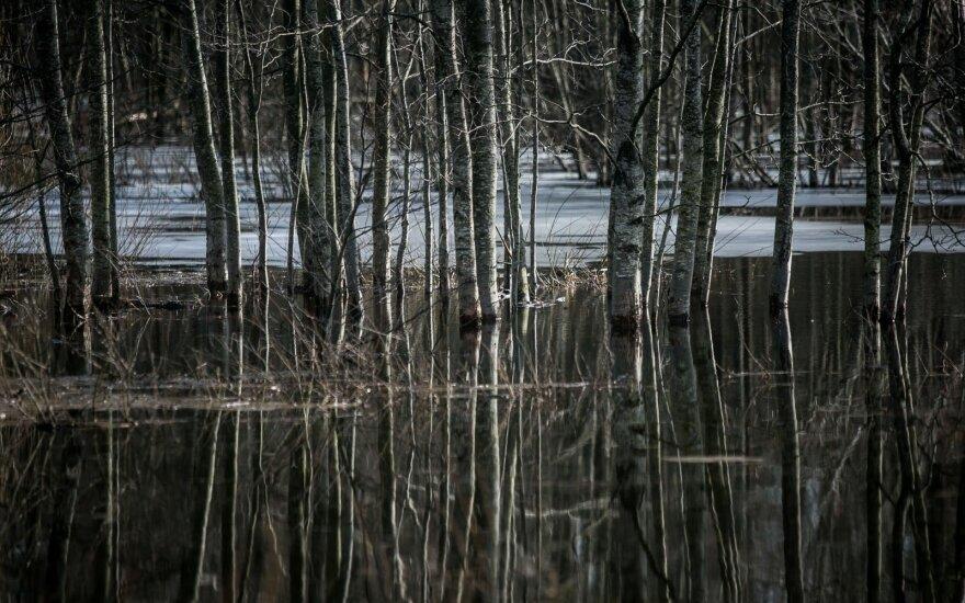 В Шилутском районе снова затапливает дорогу в Русне
