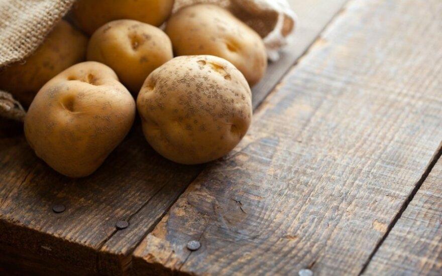 Беларусь ограничила ввоз картофеля из ЕС