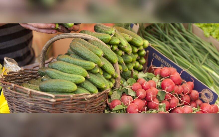 Тонны овощей отправляются на свалки
