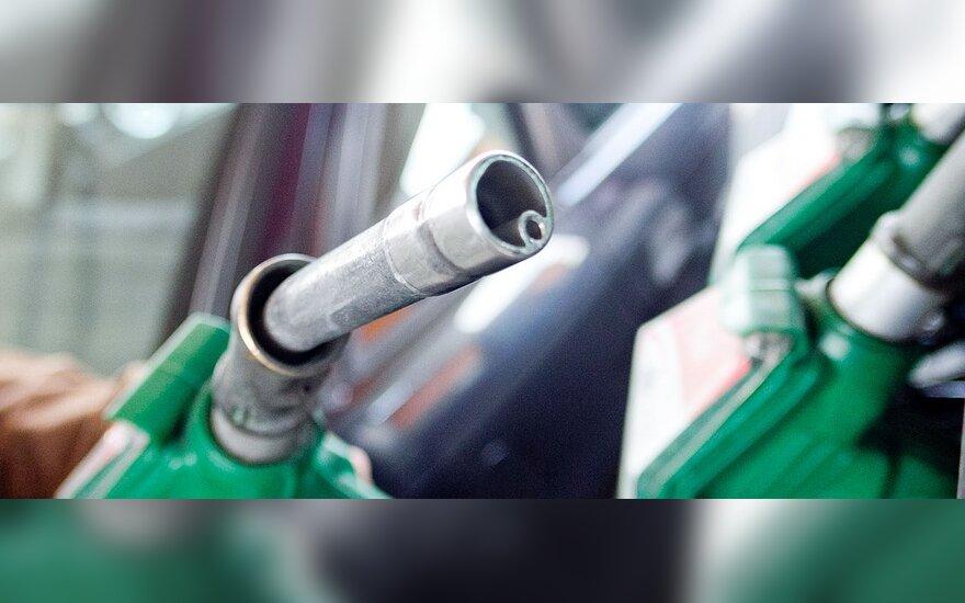 На АЗС в Беларуси топливо иностранцам - только за валюту