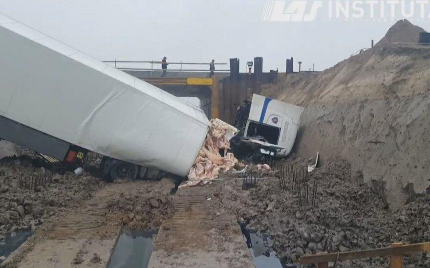 Авария на Via Baltica: из прицепа вывалились свиные туши
